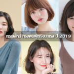 Woman Hairstyles 2019